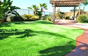 how much is artificial grass for landscaping brown synthetic fake dogs installation home depot canada rug simulation grass artificial