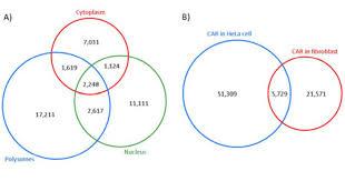 Elements Of A Venn Diagram A Venn Diagram Representing The Number Of Alu Elements Present In