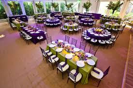 green and purple decor