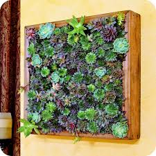 Living  Green Wall Small Living Wall Planters Superb Diy Living - Homemade decoration ideas for living room 2