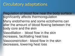 Endothermy Vs Ectothermy Venn Diagram Ppt Ch 40 Animal Form Function Powerpoint Presentation
