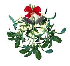 Image result for mistletoe images