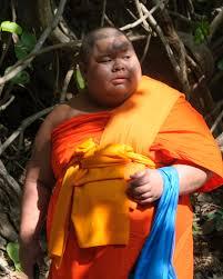 Free Images : person, people, flower, portrait, jungle, autumn, monk,  child, nikon, thailand, tribe, temple, nikond300, d300, thailandia,  chiangmai, tailandia 2681x3351 - - 588439 - Free stock photos - PxHere