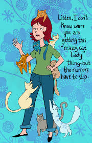 the crazy cat las images funny hd wallpaper and background photos