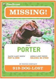 Lost Pet Flyer Maker Lost pet flyer template Lost Pet and Pet Adoption Flyers Pinterest 55