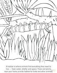 Hungry Caterpillar Coloring Pages The Very Hungry Caterpillar
