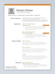 Best Resume Template Word Enchanting Template Cv Format Template Word Best Resume Templates Word Best