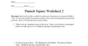 Punnett Square Worksheet 2 - Google Docs
