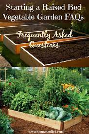 starting a raised bed vegetable garden