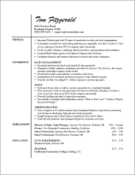 professional resume outline