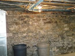 brilliant removing to removing mold from basement walls you