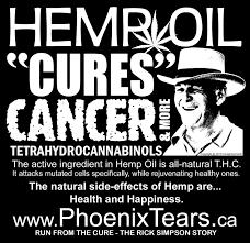 Rick Simpson Dosage Chart Rick Simpsons Cannabis Oil Alchimia Blog