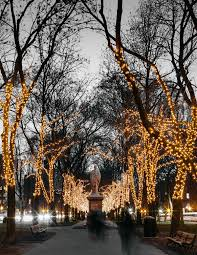 Boston Christmas Lights Tour Boston At Christmas Boston Holiday Lights Christmas Photos