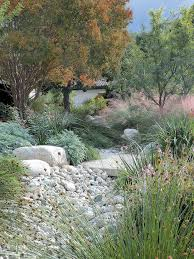 Small Picture Best 25 Low water landscaping ideas on Pinterest Desert