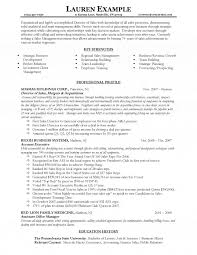 Sample Resumes For Sales Executives