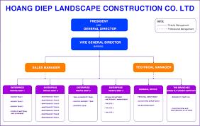 Organization Structure Hoang Diep