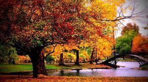 Autumn Desktop Wallpapers on ZenWallpapers