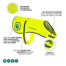 Premium Dog Reflective Vest (Neon) High-Visibility ... - Amazon.com