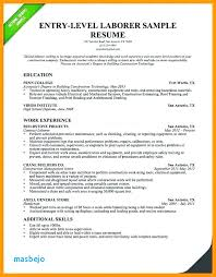 Resume Summary Examples Impressive Resume Summary Examples Entry Level Example Of Resume Summary