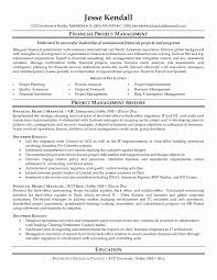 uncategorized impressive areas of excellence financial for project manager  resume sample