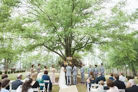oak tree wedding in the garden