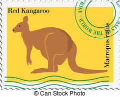 vector st with kangaroo
