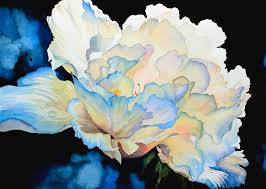 peony painting dew drops on peony by hanne lore koehler