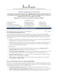 Marketing Manager Resume Summary Sample Sevte