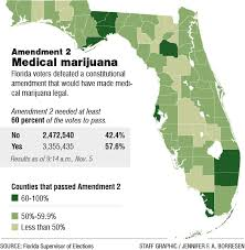 Medical 4 Pollick Politics Ht November Reject Marijuana Michael 2014 Voters Florida