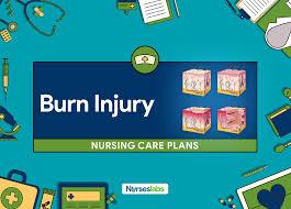 Sample Charting Fdar In Delivery 11 Burn Injury Nursing Care Plans Nursing Diagnosis
