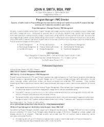 Resume Sample Summary – Amere