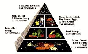 Food Chart For Adults In India Height Weight Calorie Charts