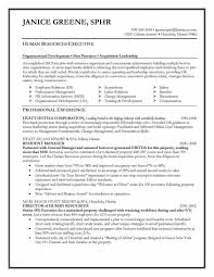 Resume Summary For Career Change Staggering Resume Objectives Career
