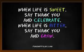 Celebrating Life Quotes Quotes On Celebrating Life Quotes About Celebrating Life Quotes 38