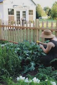 garden insecticide. Organic Gardening:Home Pesticides Home And Garden Pest Control Natural Bug Killer For Insecticide I
