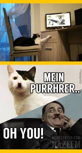 You Have To Be Kitten My Right Meow Memes. Best Collection of ... via Relatably.com