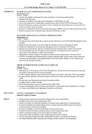 Portfolio Planning Resume Samples | Velvet Jobs