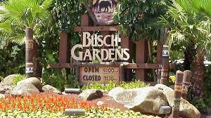 busch gardens tampa sign