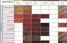 Prev Next Hair Color Chart Rainbow Tones Possibilities Your