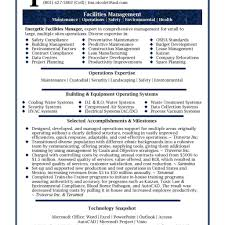 Best Executive Summary Executive Summary Resume Example Examples Personal Senior Sales With 16