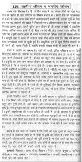 essay of city life city life essay g difference between difference between village life and city life essay in hindi
