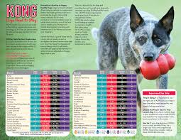 Kong Toy Size Charts By Breed Dog Toys Kong Toys Pet Dogs