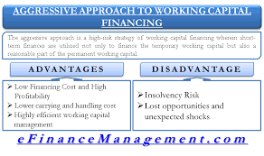 highly efficient working capital management