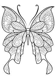 Free Butterfly Coloring Pages Adults With Nice For Page Ultimate Pdf