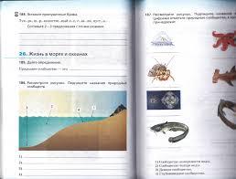 Контрольная работа по биологии на тему Среда обитания живых  hello html m308670e3 jpg