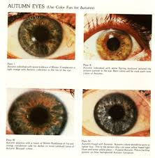 Beauty And Elegance The Autumn Eye In 2019 Types Of Eyes