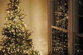 Christmas Tree In Window Stock Photos U0026 Christmas Tree In Window Christmas Tree In Window