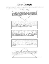 and analyze sample examples of resumes resumes formats sample
