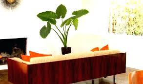 mid century modern furniture definition. Mid Century Modern Furniture Definition Download By Stores Playa Del Carmen S