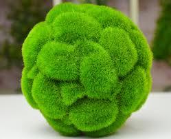 Decorative Grass Balls